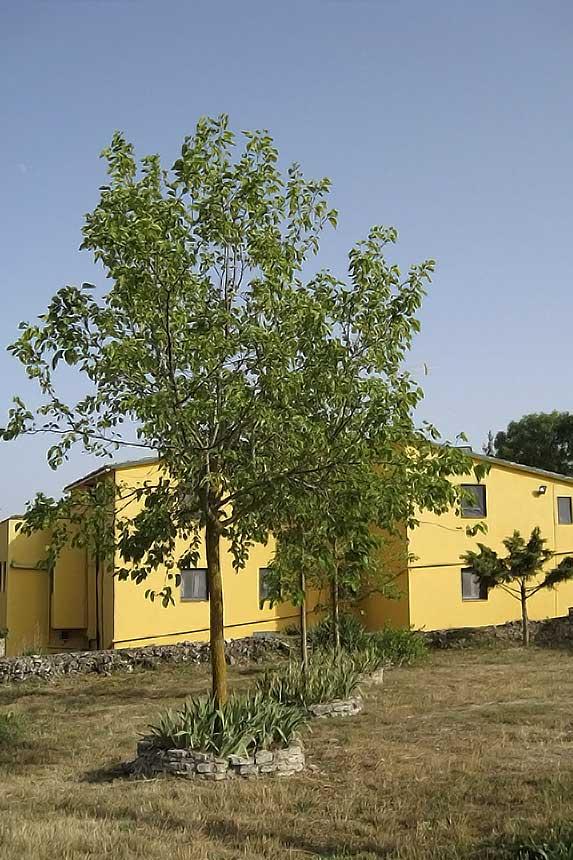 Casa de colònies Berea